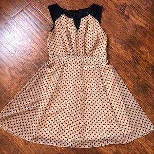 NavyBlue/Tan Polkadot Dress Size 10 vintage look!